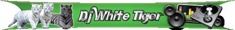 W-P CMS Portal